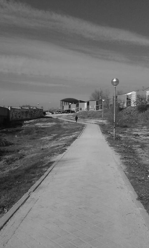 El caminante solitario